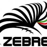 RaboDirect PRO 12: sconfitte sia le Zebre sia la Benetton