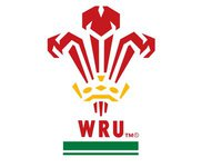 galles rugby logo