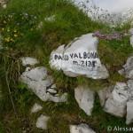 Salita al Passo Valbona in Alpago