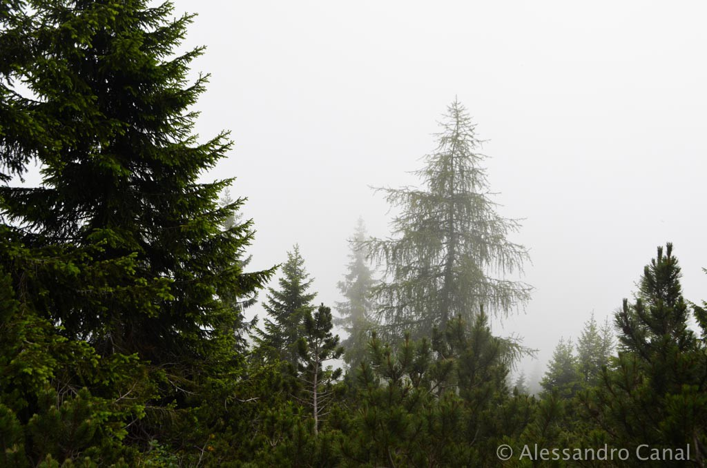 nella-nebbia-verso-rifugio-sommariva-2
