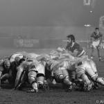 Guinness PRO12: sei squadre in quattro punti