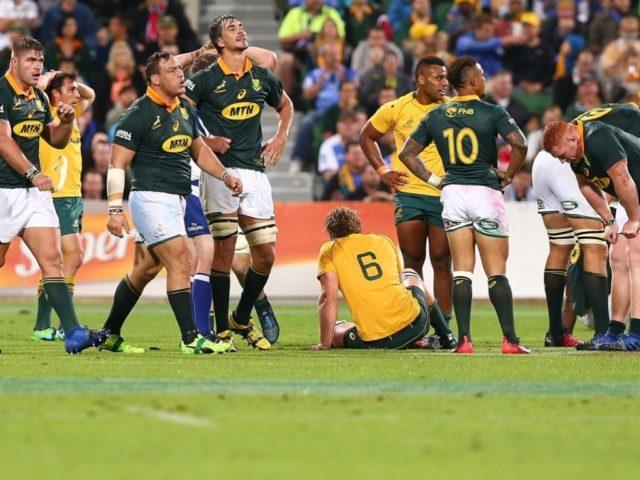 australia-springboks rugby championship 2017