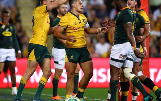 Rugby Championship 2018: l'Australia batte gli Springboks