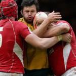 Test di Novembre: Galles-Australia