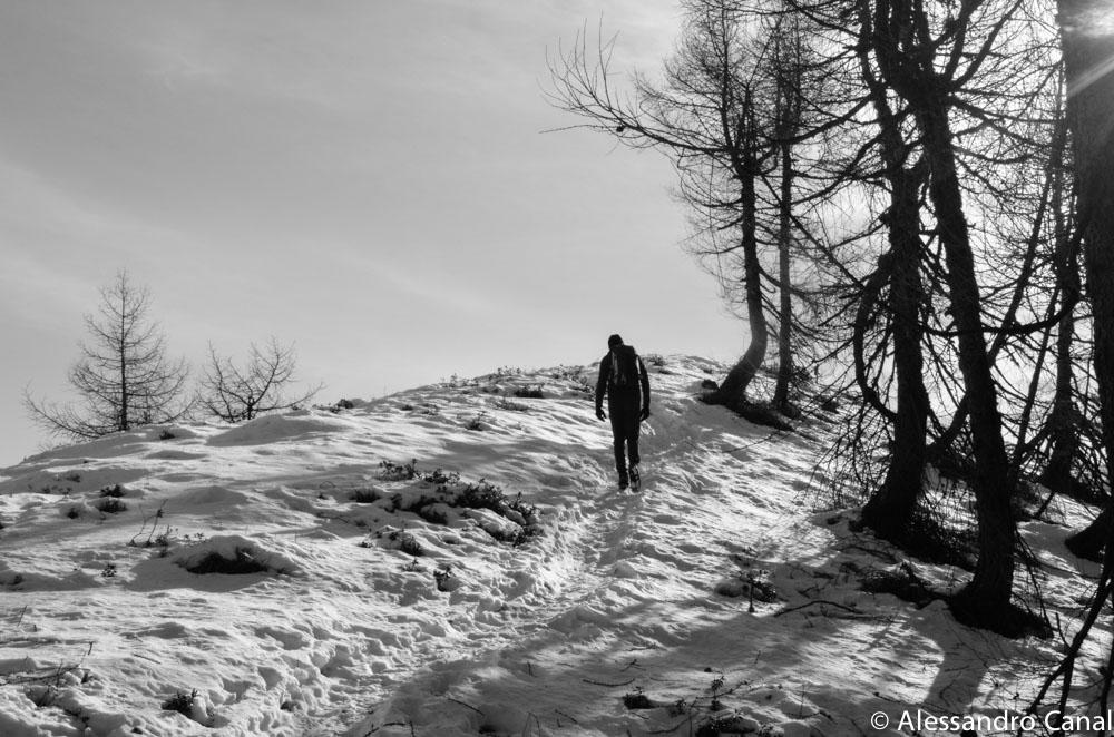 L'escursione sul Monte Punta